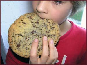 Henri mit groߟem Chocolate Chip Cookie