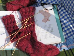 dunkelrote Socken mit Lochmuster auf einer sonnigen Bank